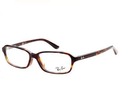 雷朋RayBan RX5293D板材眼镜架